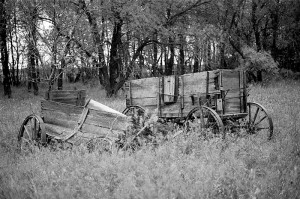 """Wagons Rest"""